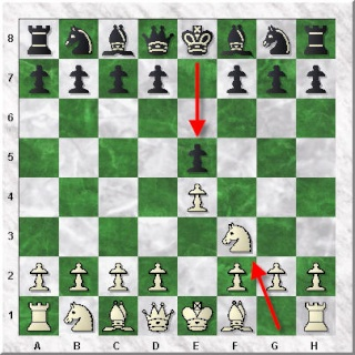 تدوين النقلات في الشطرنج 1 How-to13