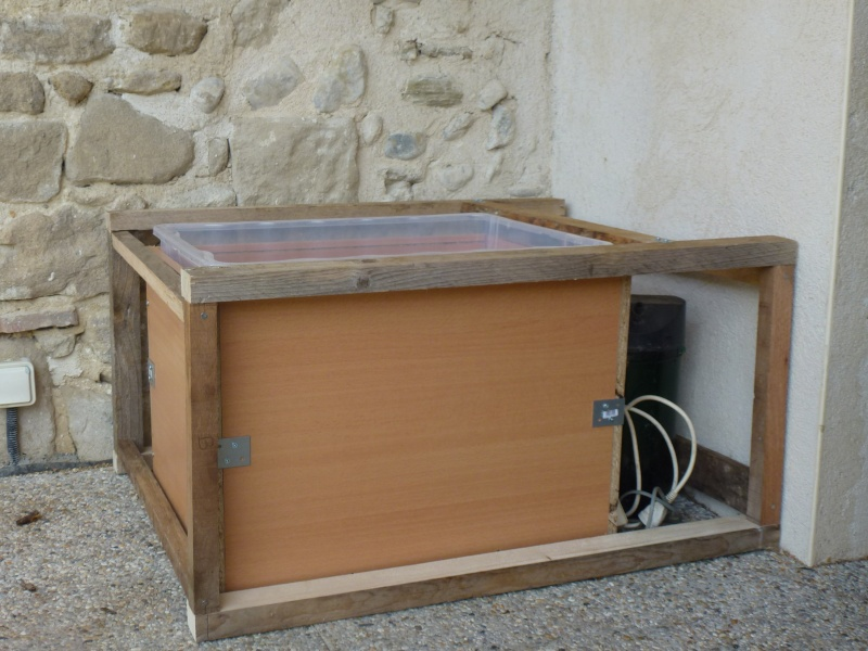 petit bassin pour terrasse P1040112