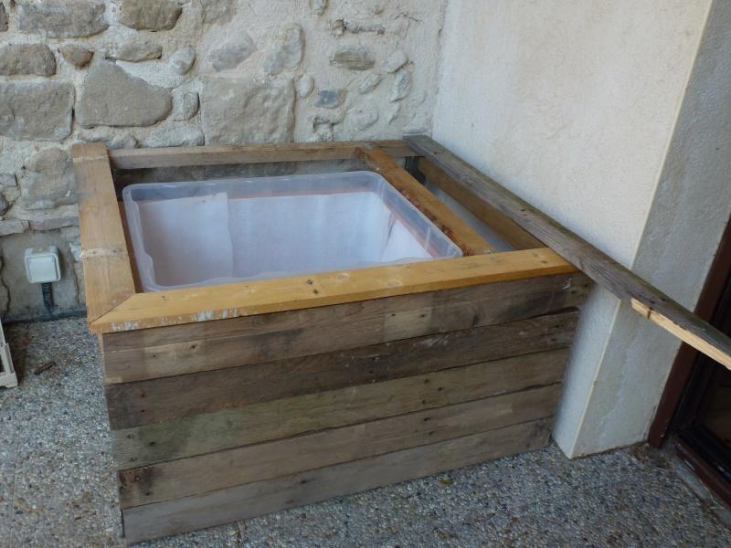 petit bassin pour terrasse P1040114