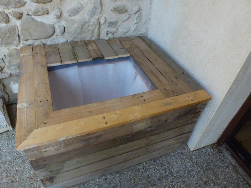 petit bassin pour terrasse P1040115