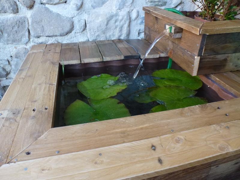 petit bassin pour terrasse P1040210