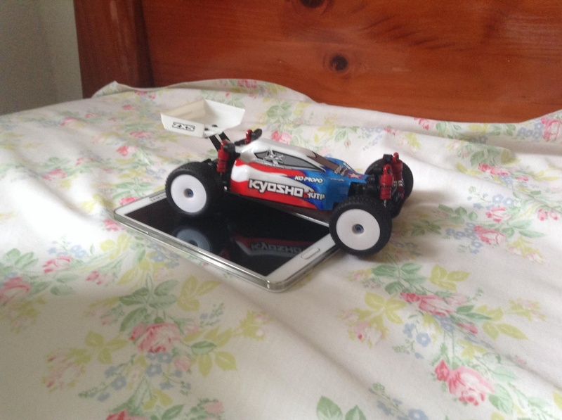 Voila Mon petit buggy 10339410