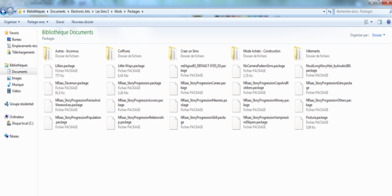 Installer les Nrass, mastercontroller ect... Sims_311