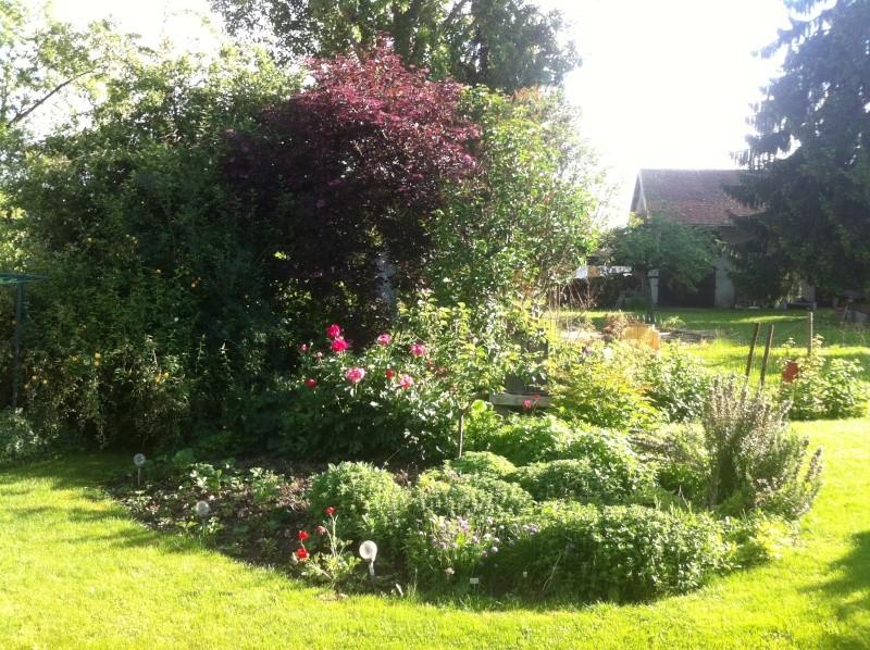 Jardinage en tout genre - Page 3 Jardin18