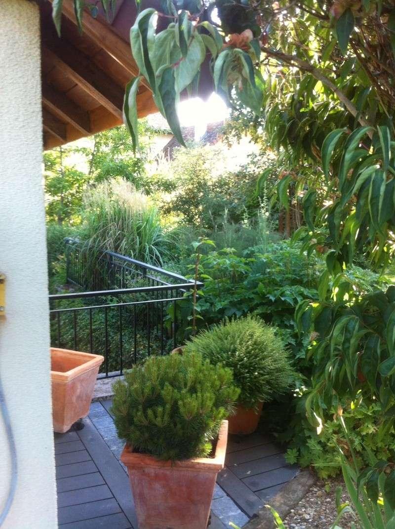 Jardinage en tout genre - Page 3 Jardin23
