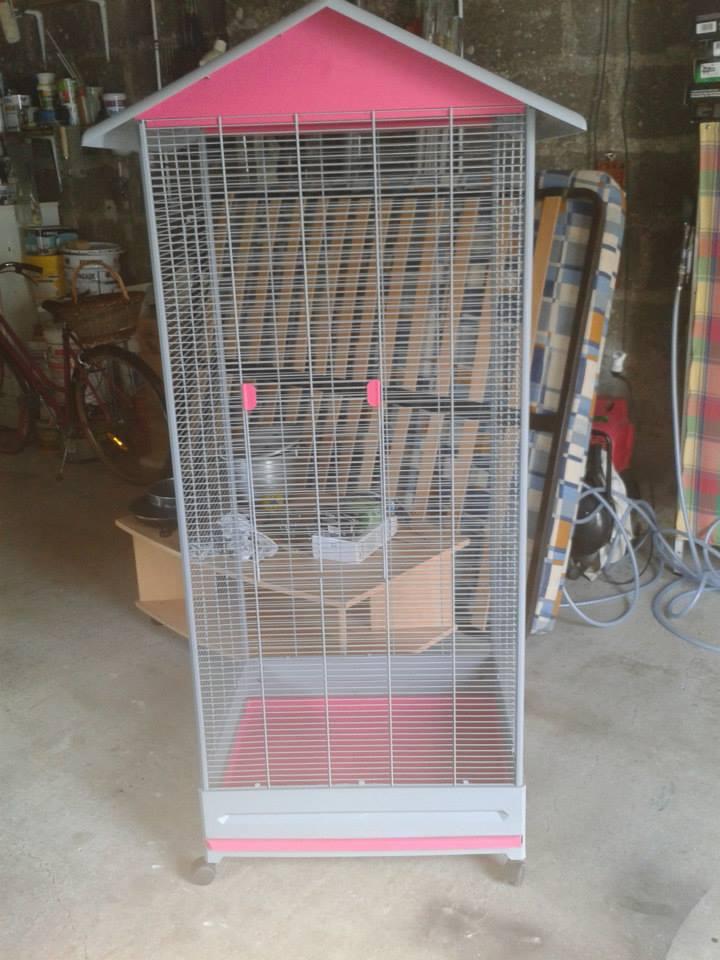 Aide pour aménagement de cage. 10371311