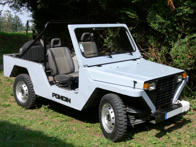 Poncin 4X4 chassis long 1995 2.1 Diesel atmo 25000km P1070712