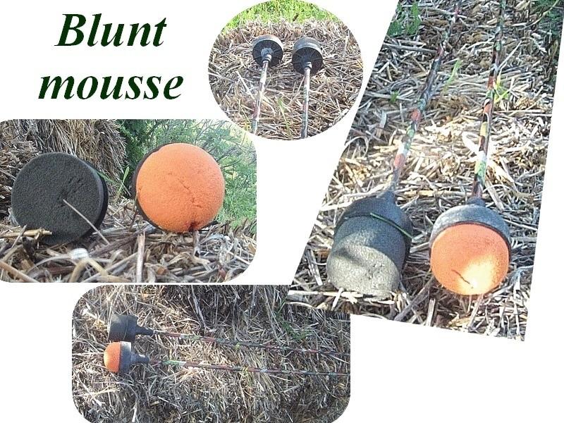 Définition acte de chasse et pointes en mousse - Page 3 Blunt_11