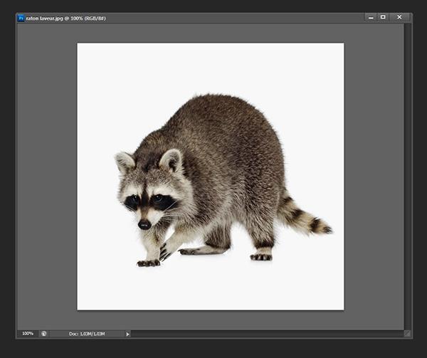 Ajouter un contour à une image [Photoshop] 112