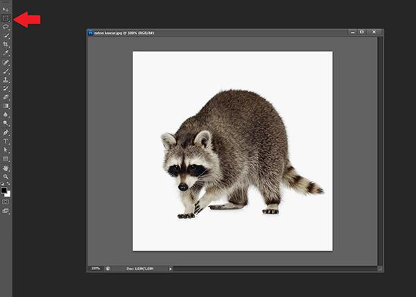 Ajouter un contour à une image [Photoshop] 210