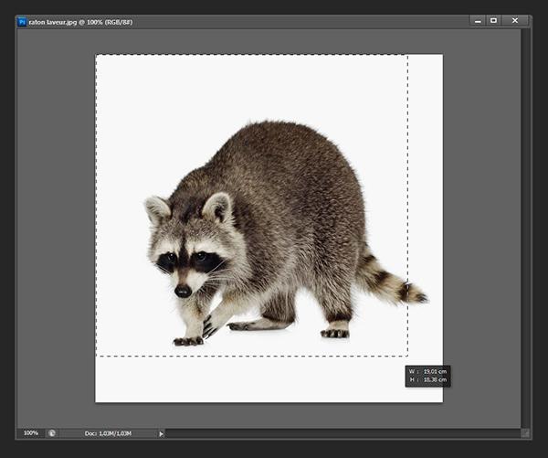 Ajouter un contour à une image [Photoshop] 310