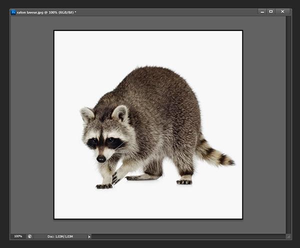 Ajouter un contour à une image [Photoshop] 610