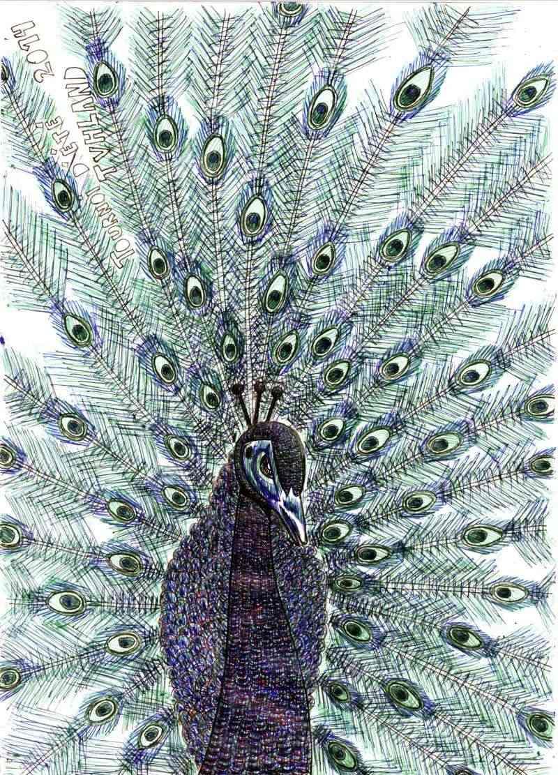 galerie de Phil Aug02011