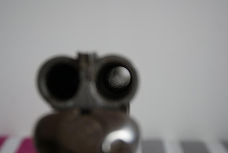 la restauration d'un calibre 16 Dsc09121