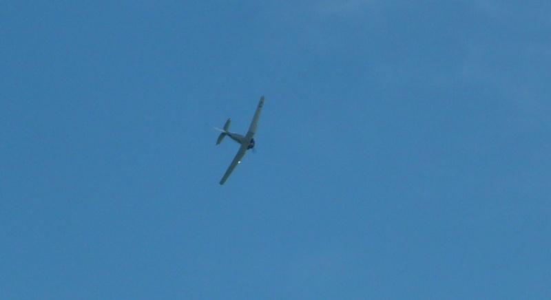 Meeting aérien d'Aix les Bains P1100548