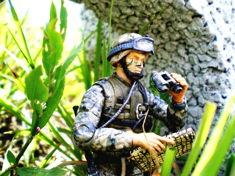 Selvaland, mes soldats en action - Page 3 Imgp2710