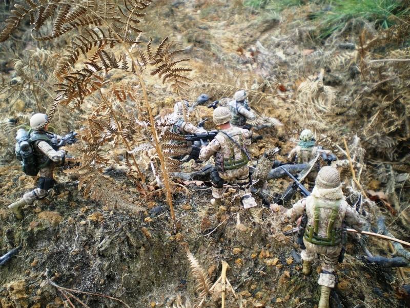 Selvaland, mes soldats en action Imgp5010
