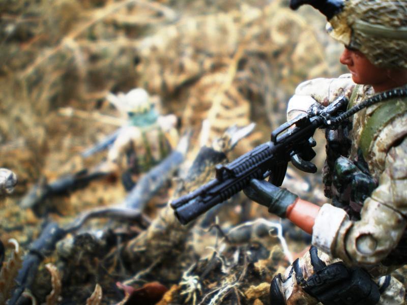 Selvaland, mes soldats en action Imgp5112