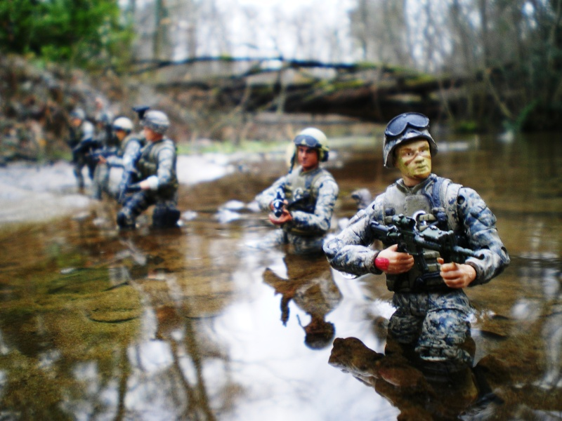 Selvaland, mes soldats en action Imgp5310