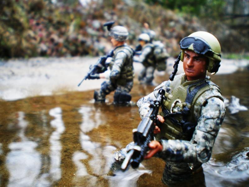 Selvaland, mes soldats en action Imgp5311