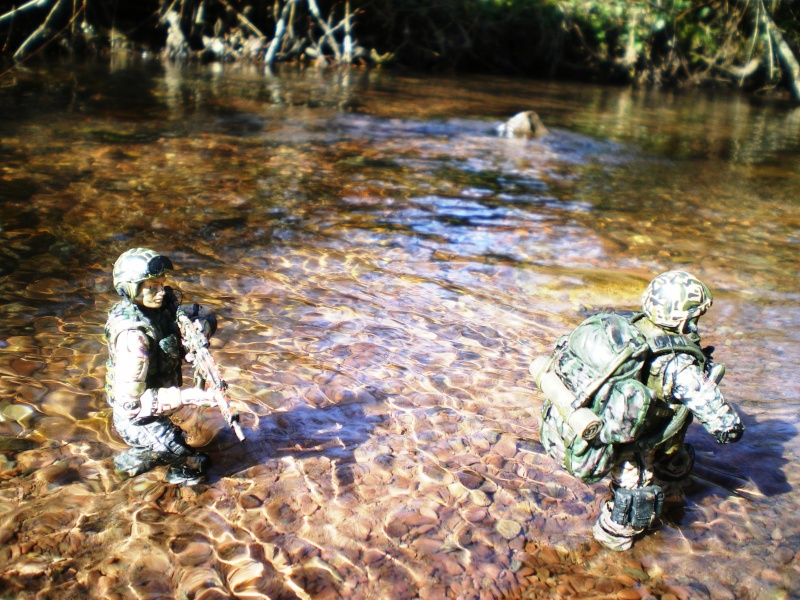 Selvaland, mes soldats en action - Page 3 Imgp6311
