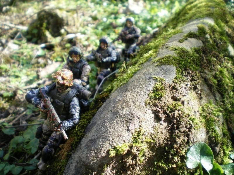 Selvaland, mes soldats en action - Page 3 Imgp6411