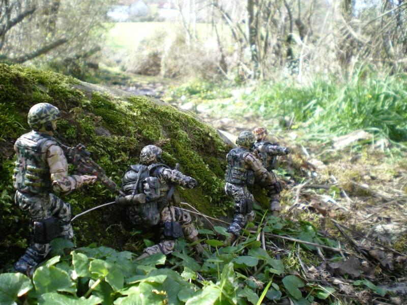 Selvaland, mes soldats en action - Page 3 Imgp6413