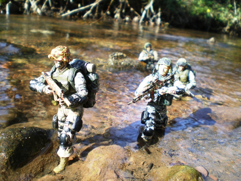 Selvaland, mes soldats en action - Page 3 Imgp6414