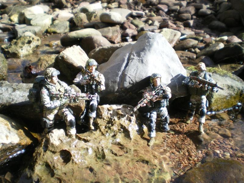 Selvaland, mes soldats en action - Page 3 Imgp6417