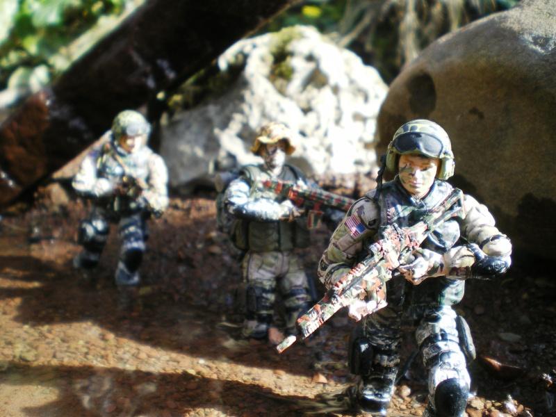 Selvaland, mes soldats en action - Page 3 Imgp6421