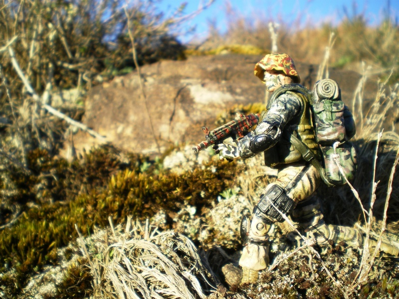 Selvaland, mes soldats en action - Page 3 Imgp6425