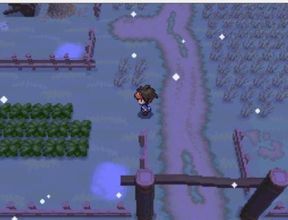 Pokemon Black 2 Random Locke 111