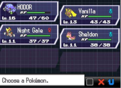 Pokemon Black 2 Random Locke 11111