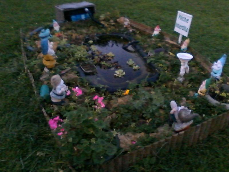 Mon bassin de jardin - Page 3 00210