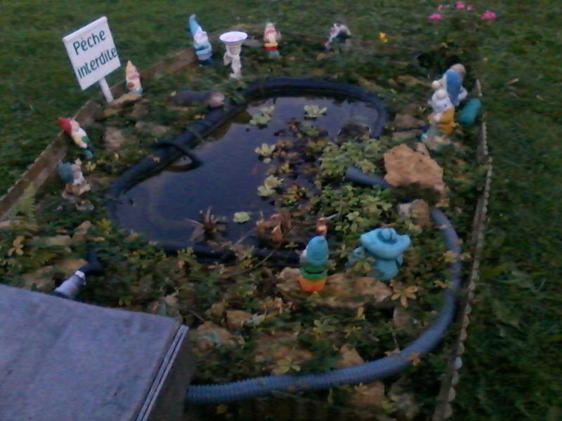 Mon bassin de jardin - Page 3 00311