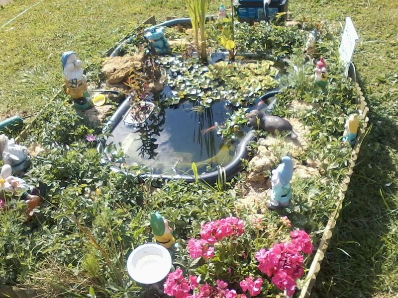 Mon bassin de jardin P01-0712