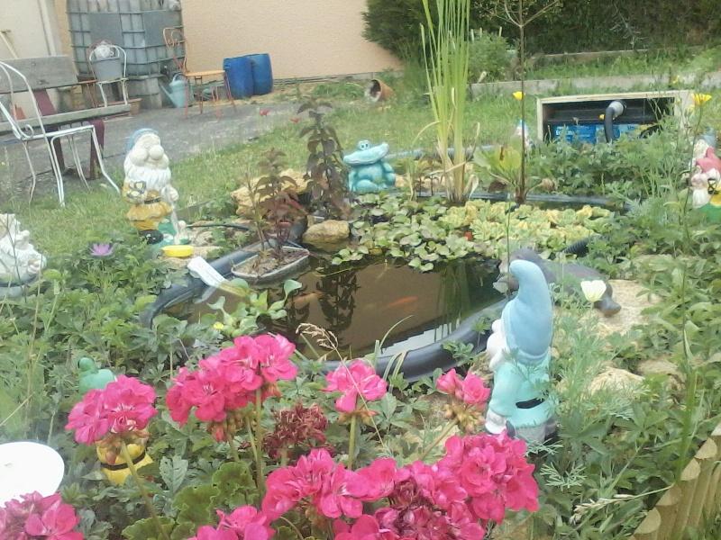 Mon bassin de jardin P04-0711