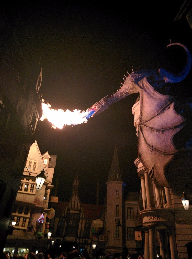 [Universal Studios Florida] The Wizarding World of Harry Potter - Diagon Alley (2014) - Page 2 Img_2011