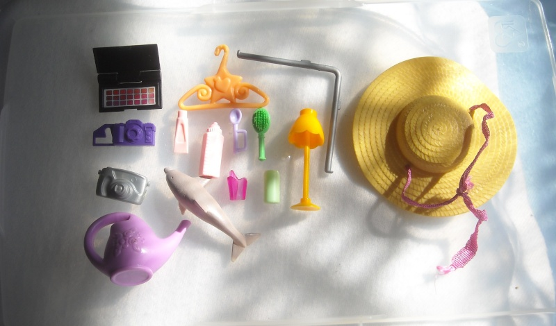 Des accessoires (louloute) fin 1er post (28.08.16) - Page 2 Dscn9616