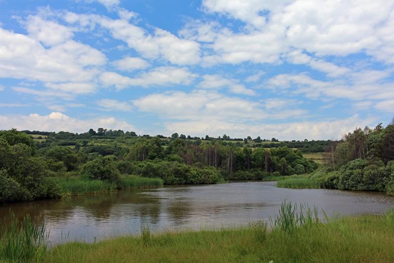 Reportage photos sur notre territoire de chasse Img_5911