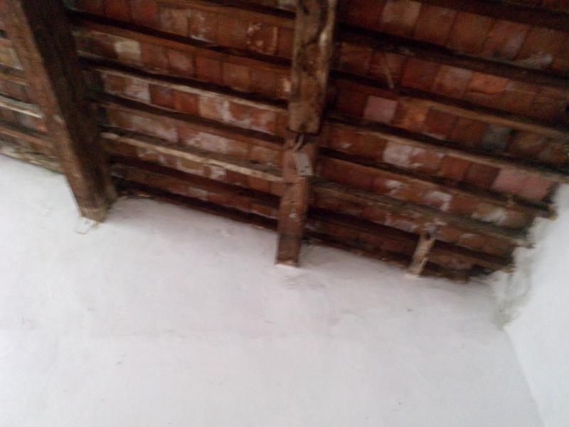 Un nid dans mon salon ?? besoin d'aide svp Img_2012
