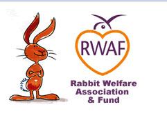 RWAF Committee Forum