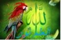 نـــــــــداء عـــــــــــــاجل منتدى جديد !!! 93441310