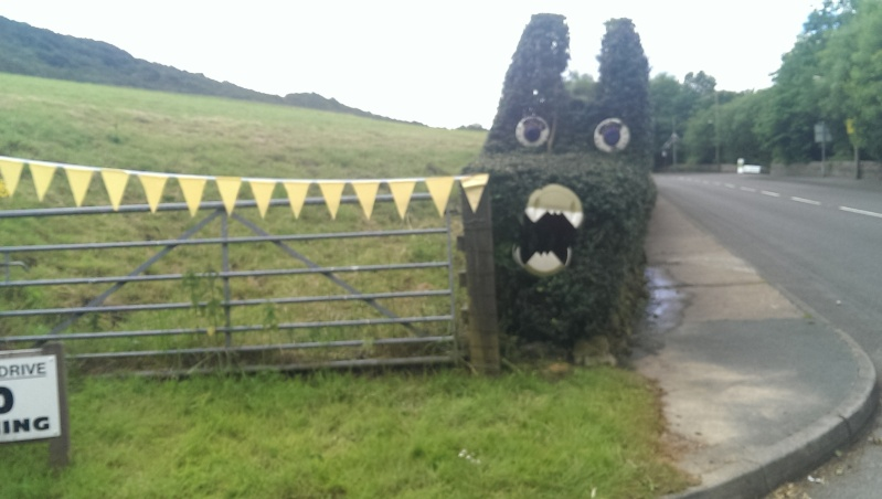 Le Tour Yorkshire.  Tdf_cr15