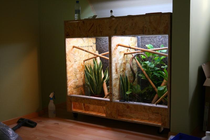 (VENDS) Double terrarium fait maison (2 x 60x60x80) - B