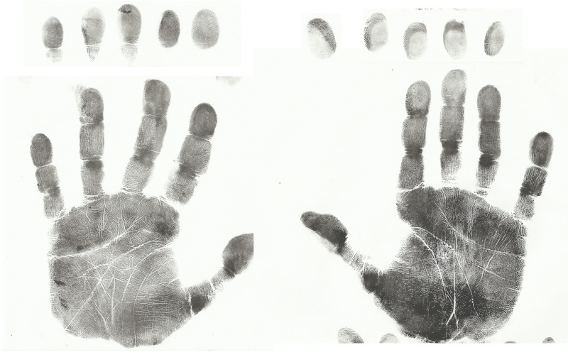 Life purpose and fingerprints Hands_10