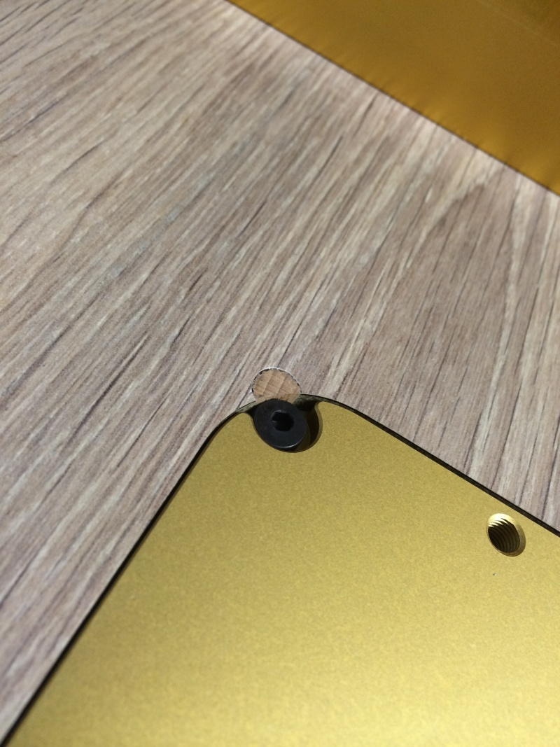 Une table polyvalente : défonceuse + Scie sous table Img_3310