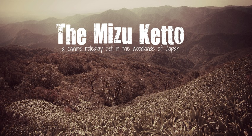 The Mizu Ketto