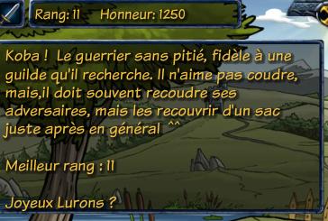Nouveau serveur français !  Captur14