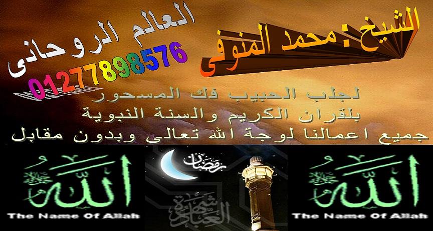 الشيخ محمد المنوفى
